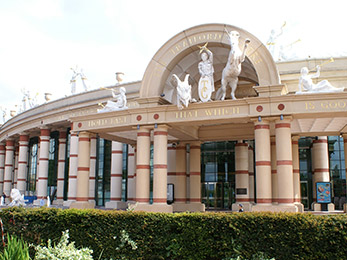 Shopping at the Trafford Centre